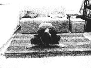 מרידיאן מעטפת הלב. צילום מאת טל בדיחי.