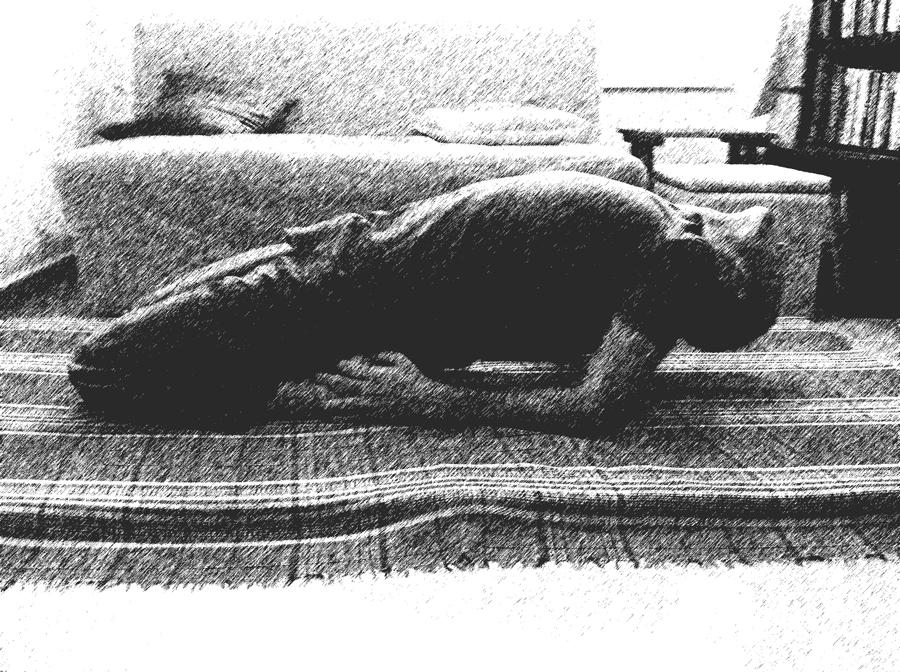 מרידיאני הקיבה והטחול-חלק ב. צילום מאת טל בדיחי.