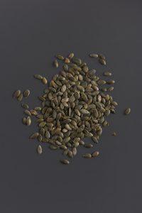 זרעי דלעת יבשים
